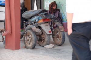 Maroko53
